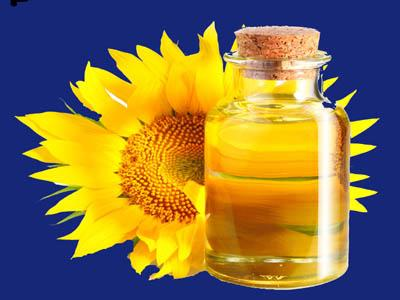Домашний бизнес-производство подсолнечного масла