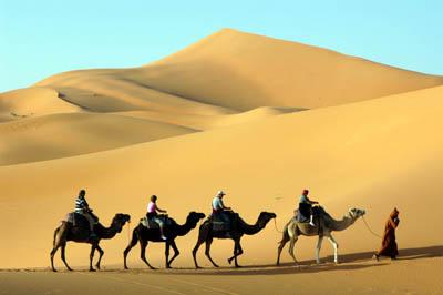 Туризм и бизнес. Как заработать на туризме в интернете