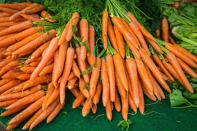 Выращивание моркови своими руками